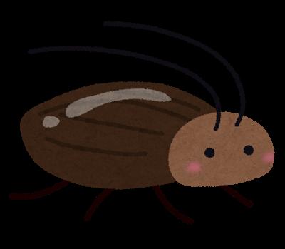 ゴキブリが天井で動かない時、冷凍して退治するスプレーが秀逸すぎ