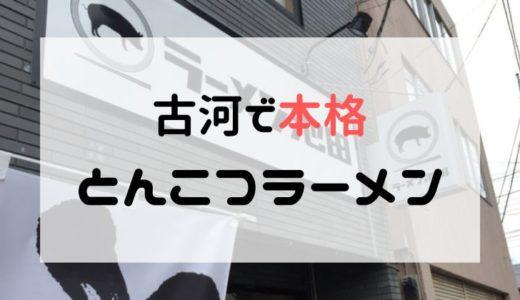 【ラーメン池田】本格とんこつラーメンを古河で!【古河でランチ】