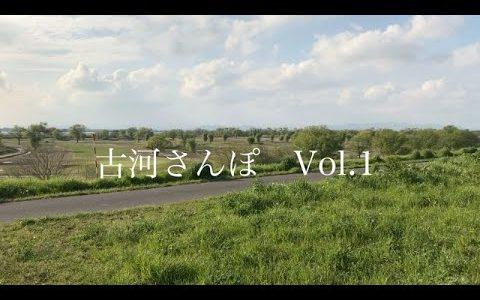 【古河さんぽ】古河駅から雀神社まで歩きました【動画あり】