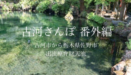 【出流原弁天池】栃木県佐野市に湧水百名水にも選ばれた水があります【動画あり】